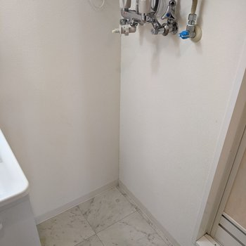 洗面台横に洗濯機置き場があります。