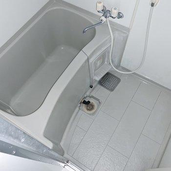 お風呂はシンプル。壁に貼る鏡やシャンプーラックがあると便利かな。(※写真はフラッシュを使用しており、6階の反転間取り別部屋のものです)