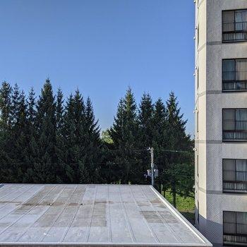 正面には建物がなく日差しなどに影響はなさそうです。