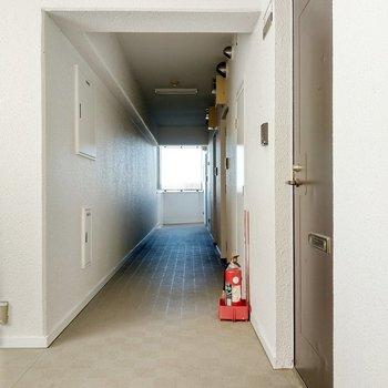 共用廊下も清潔です。