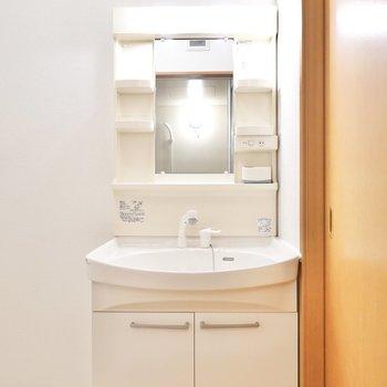 棚付きの洗面台。シャンプードレッサー仕様です。(※写真は同間取り別部屋のものです)