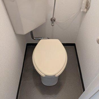 落ち着けそうな広さのトイレ。