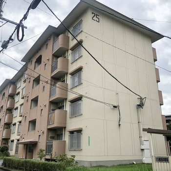 沢山同じ建物が並ぶ中の25棟のお部屋。