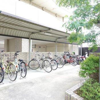 反対側には屋根付きの駐輪場もあります。
