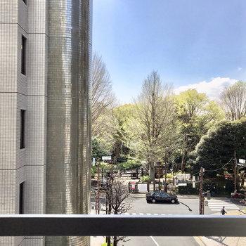 新宿御苑がちらりと見えます