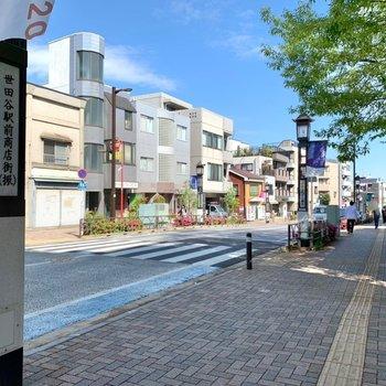 駅までは大通り沿いを歩きます。広めの歩道で歩きやすいです。