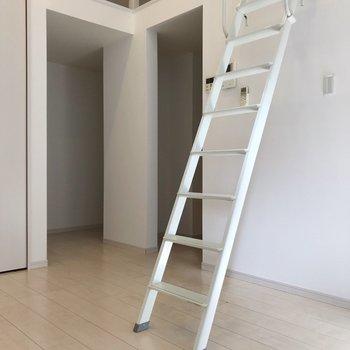 コンパクト空間の中、ハシゴが存在感を放ちます(※写真は1階の同間取り別部屋、清掃前のものです)