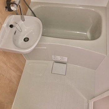 ゆっくりと体を洗えそうです※写真は4階の似た間取り、別部屋のもの