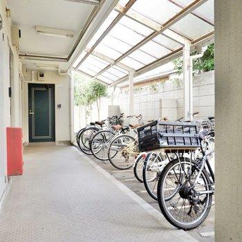共用部の廊下には屋根付きの駐輪場が。