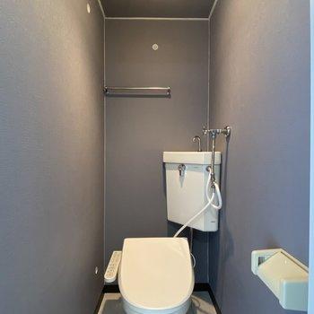 トイレはネイビークロスでお洒落な雰囲気。ライトが映えますね。