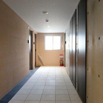 共用廊下も室内でとても清潔。