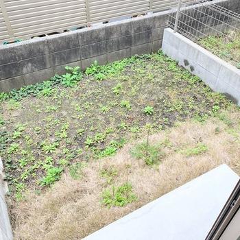 専用庭兼バルコニー。家庭菜園だって出来そう!