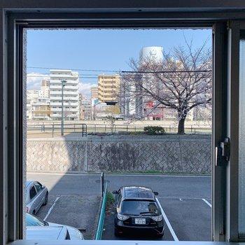 洗面台の小窓からは元安川の桜並木が。お洗濯しながら癒やされちゃうな〜