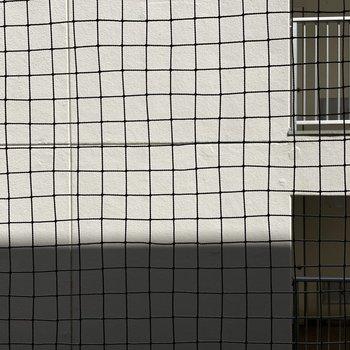 眺望は壁。ネットでやや視線カットされています。