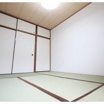 シティハイツ押田