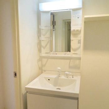 収納たっぷりの洗面台※写真は反転間取りの102号室のもの