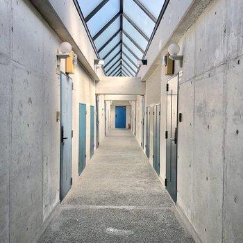 共用廊下は明るくて、近未来的でした。