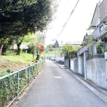 お部屋前の通り。のどかな風景が広がります。
