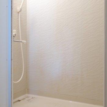 シャワーブースのみ(※写真は2階の同間取り別部屋のものです)