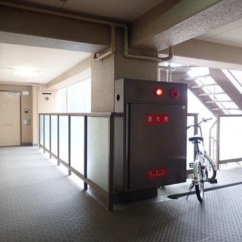 【共用部】廊下は幅があるので、家具も運びやすいかと!