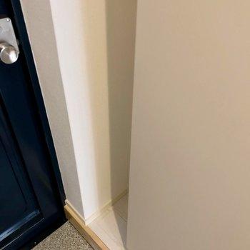 扉側の隙間に傘も置けそうです。