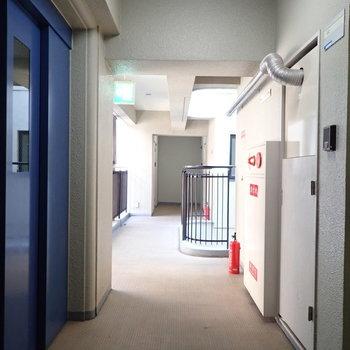 【共用部】廊下はすこし渋めに感じました!