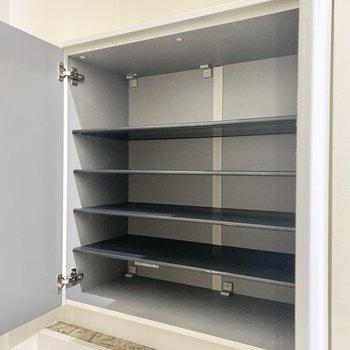1段に2足ずつ入りそうな棚が5段!2〜3人分の靴も収まりそうですね。