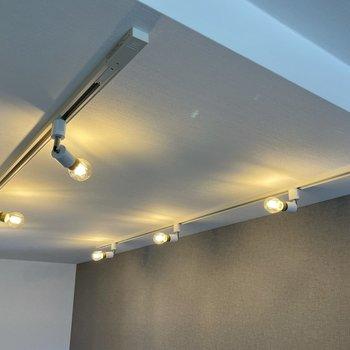 照明は自由度の高いライティングレール。