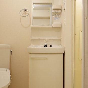 脱衣所に独立洗面台。(※写真は別棟2階の同間取り別部屋のものです)
