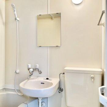 タオル掛け、鏡があります。
