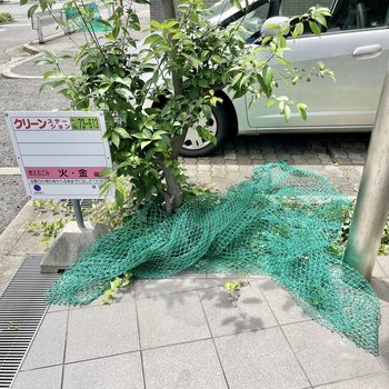 【共用部】ゴミはネットをかけて