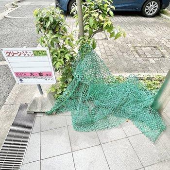 【共用部】ゴミ捨て場はエントランスを出たところに。