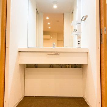扉を開けると、目の前には大きな洗面台が登場。