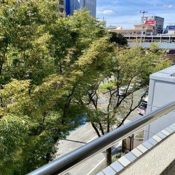 下はバスのロータリー。大橋駅がちらりと見えます。