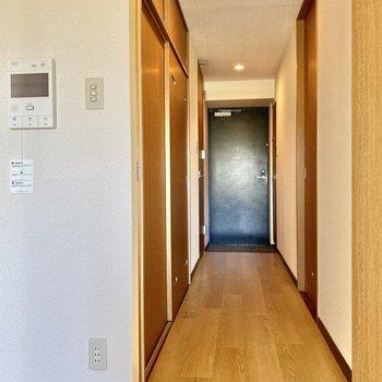扉横にモニターホン。廊下向かって右に脱衣所。左にトイレと収納スペース。