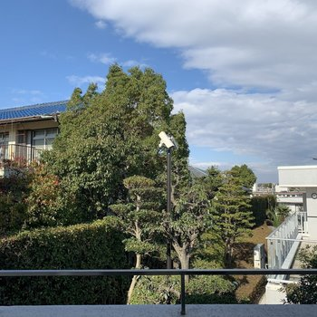 眺望はご近所様の植栽。