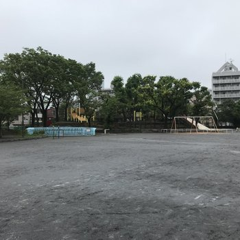 近くには広々とした公園があります。