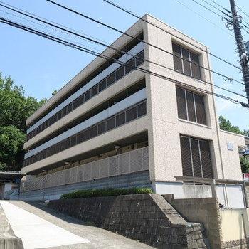 コンフォート永山