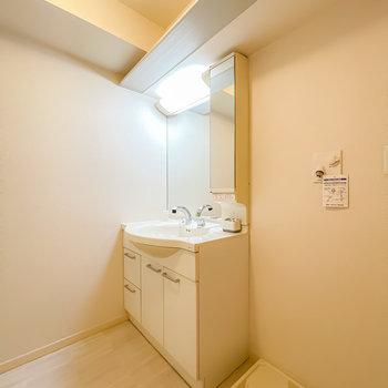 洗面台もとても大きめ。天井に棚があり、ちょっとした小物の収納に良さそうです。(※写真は1階の同間取り別部屋のお部屋です)
