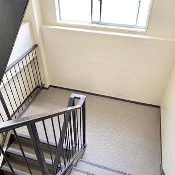 室内階段もとてもきれい。