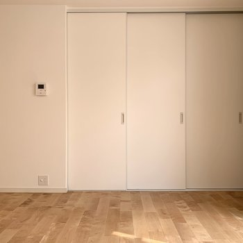 3枚引き込み扉をあけると