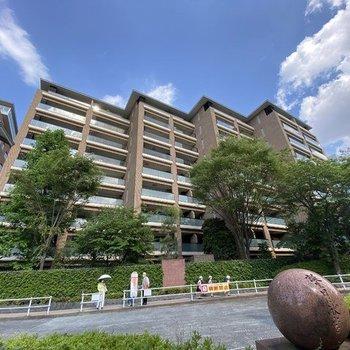 広尾ガーデンフォレスト桜レジデンスB406