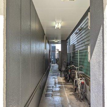 この細道を抜けたところに入口があります。