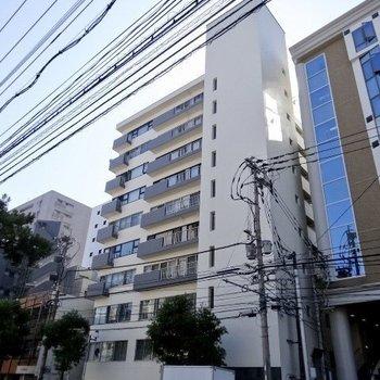 高宮通り沿い。外観のシンプルさとのギャップ。