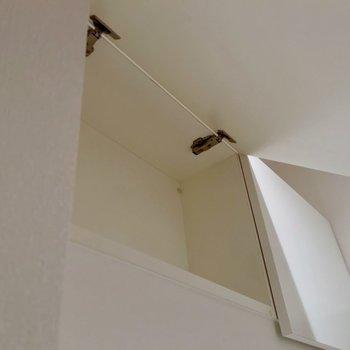 天袋もあります。(※写真は5階の反転間取り別部屋のものです)