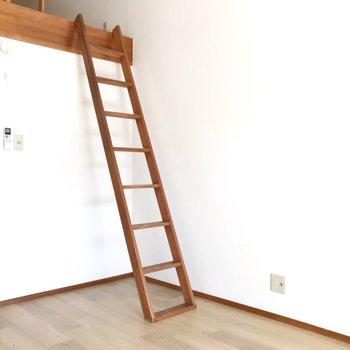はしごは手すりがないのでちょっぴり怖いかな