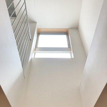 吹き抜けで上階の光を取り込めます◎