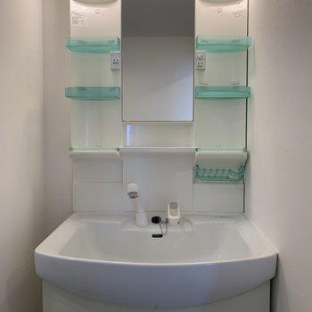 洗面台は収納もできるタイプで使いやすいです。