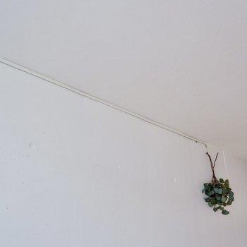 ピクチャーレールにはドライフラワーや小物をぶら下げて。