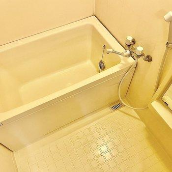 浴室はやや古さが残っていますが広さは問題なさそう。